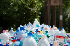 Canva - Assorted Plastic Bottles